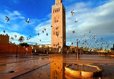 Exceptional Trip to Morocco from Malaga 5 days