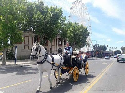 Horse Carriage Ride around Malaga Centre