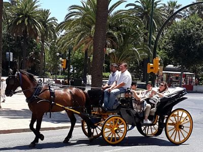 3-horse-carriage-malagatrips-booking