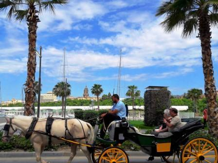 6-horse-carriage-malagueta