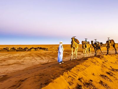 Desert, Chaouen & Marrakech from Malaga 10 days