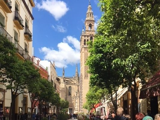 Seville Private Tour from Malaga