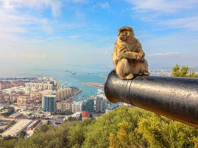 Gibraltar Semi Private Tour from Malaga