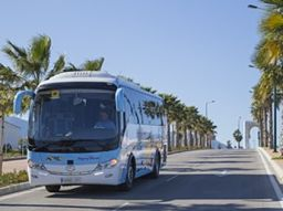 Buses from Malaga